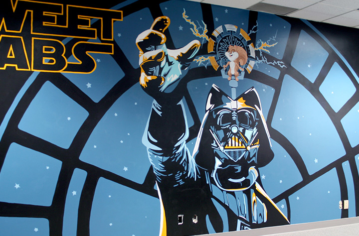 Vader Mural Thumbnail